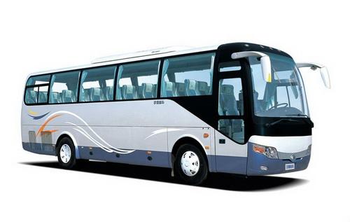 Transport Timisoara Belgrad